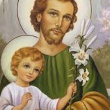 Artigo: Um Santo chamado José