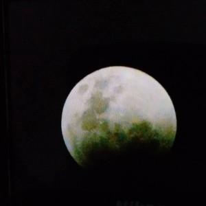 lua julia
