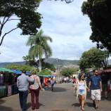 3º Mercado Vivo + Verde em Santa Tereza