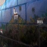 Show  e Oficina de pintura com Marck Ribeiro
