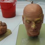 Semana do Cérebro no Espaço do Conhecimento